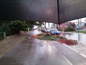 מתחת למטריה (צילום: ליאורה זלצברג)