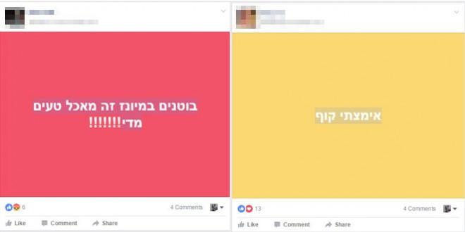 """""""משחק ההכרה באוטיזם 2017"""". מתוך פייסבוק"""