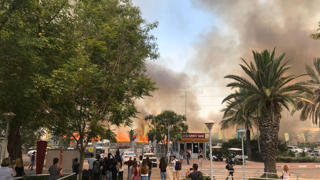 שריפה שפרצה סמוך למכללה צילום: אלכס דולברג