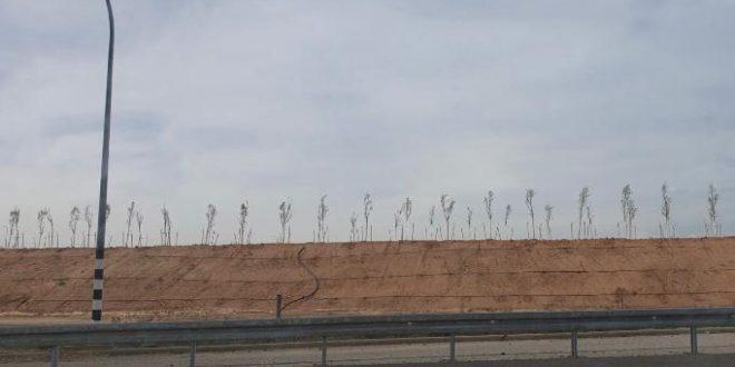 עצים נגד טילים: המכשול מתרחב לכביש 34 סמוך לקיבוץ ארז